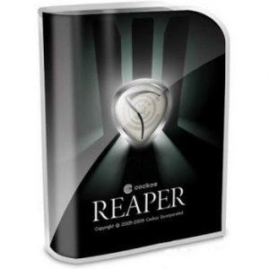 REAPER 5.94 Crack